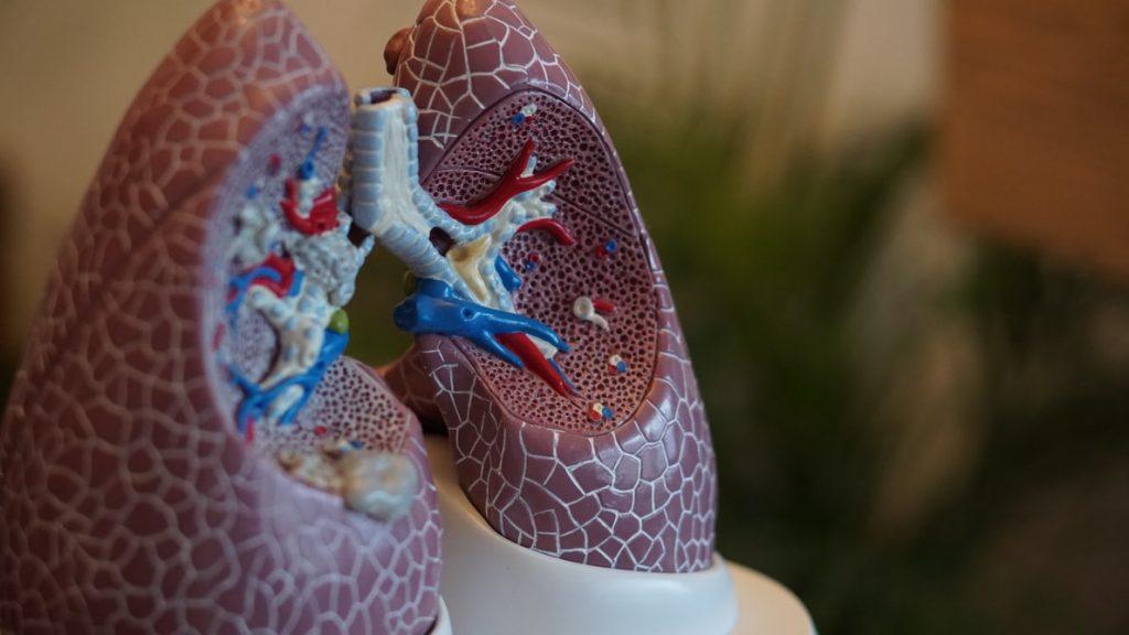 para combatir las dificultades respiratorias y otros usos