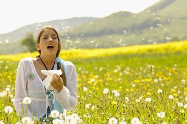 Remedio natural contra la alergia.  ¿Funciona?  Reseñas